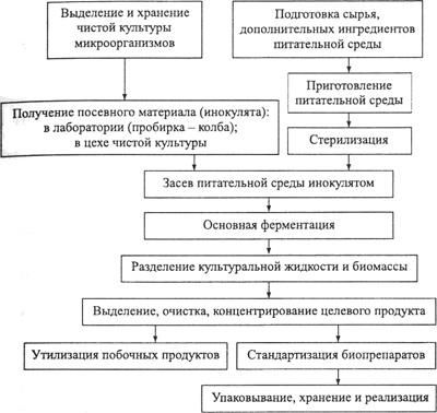 Типовая схема получения микробных биопрепаратов